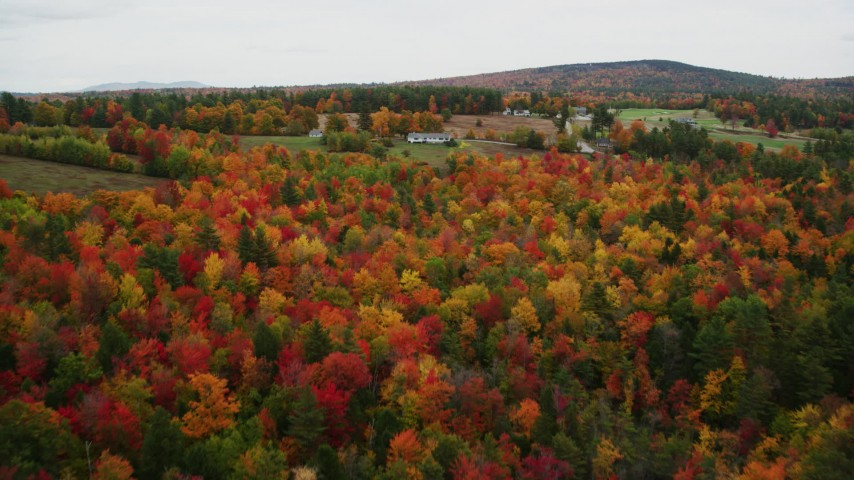 6K stock footage aerial video flying over brightly colored forest, pan by rural homes, autumn, Newbury, New Hampshire Aerial Stock Footage | AX151_092