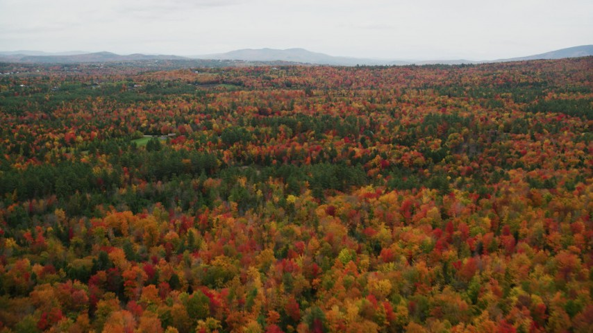 6K stock footage aerial video flying over forest of colorful trees, rural homes, autumn, Newbury, New Hampshire Aerial Stock Footage | AX151_093
