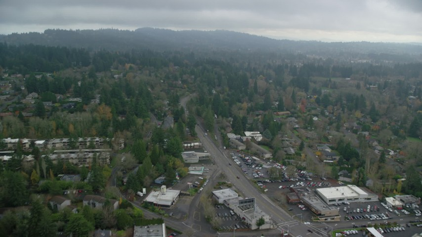 6K stock footage aerial video flying over trees and residential area on a cloudy day, autumn, Portland, Oregon Aerial Stock Footage | AX153_006
