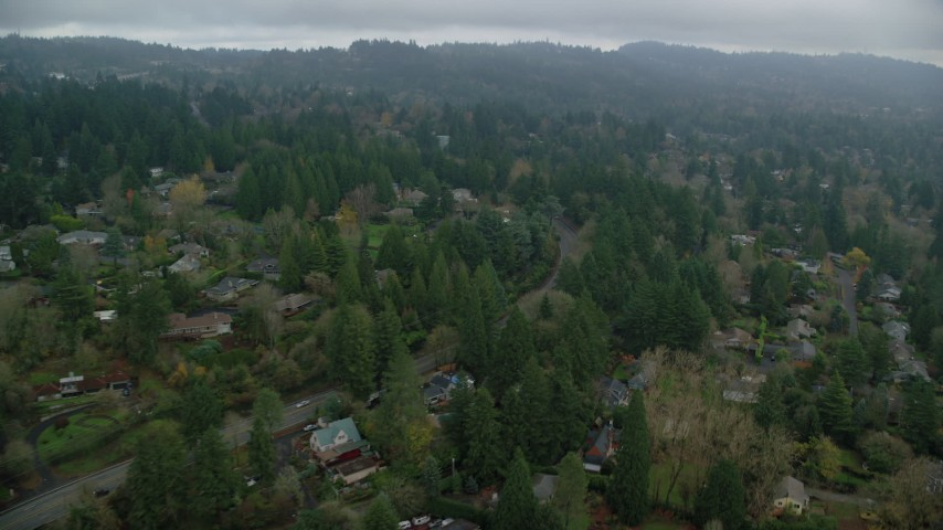 6K stock footage aerial video flying over houses among trees, autumn, Portland, Oregon Aerial Stock Footage   AX153_007