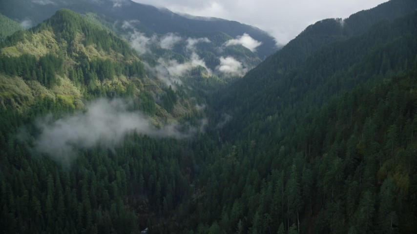 6K aerial video flying through Eagle Creek Trail canyon, Cascade Range, Hood River County, Oregon Aerial Stock Footage | AX154_042
