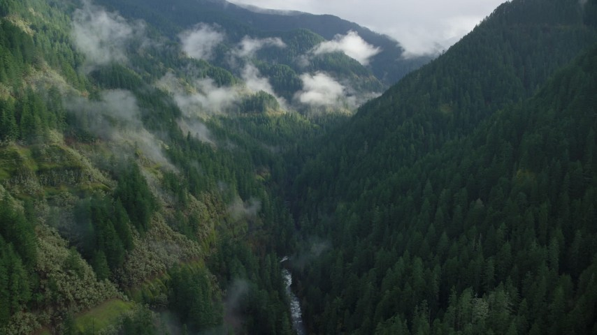 6K aerial video flying through canyon to follow Eagle Creek Trail, Cascade Range, Hood River County, Oregon Aerial Stock Footage | AX154_043