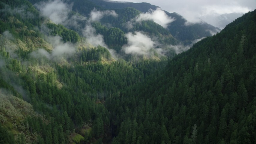 6K aerial video following Eagle Creek Trail through a canyon in the Cascade Range, Hood River County, Oregon Aerial Stock Footage | AX154_044