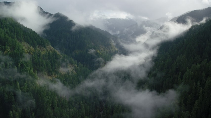 6K stock footage aerial video following Eagle Creek Trail over misty clouds in the Cascade Range, Hood River County, Oregon Aerial Stock Footage | AX154_046