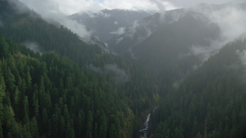 6K aerial video flying through Eagle Creek Trail canyon with misty clouds, Cascade Range, Hood River County, Oregon Aerial Stock Footage | AX154_049