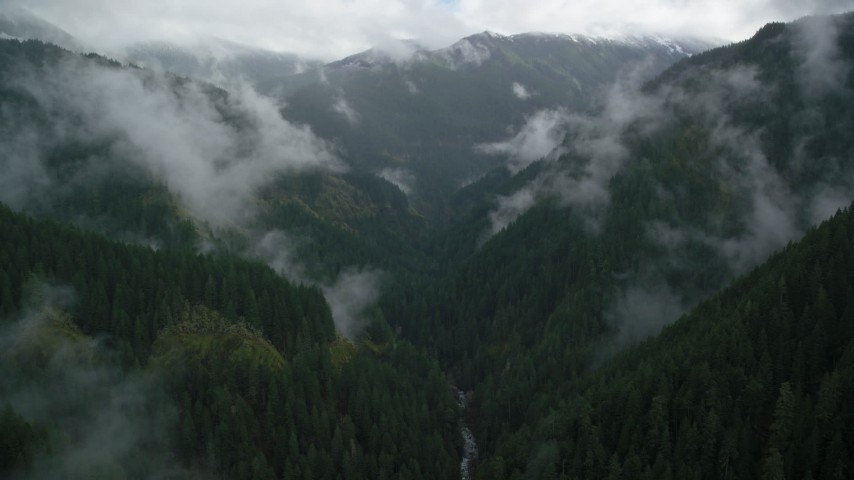 6K aerial video following Eagle Creek Trail through mountain canyon in Cascade Range, Hood River County, Oregon Aerial Stock Footage | AX154_051