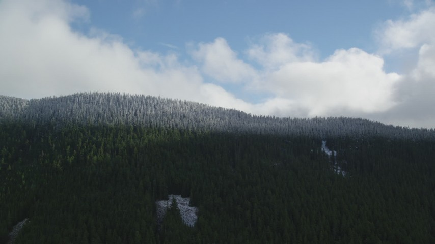 6K aerial video approaching the snow line and snowy evergreen trees atop a mountain ridge, Cascade Range, Hood River County, Oregon Aerial Stock Footage | AX154_058