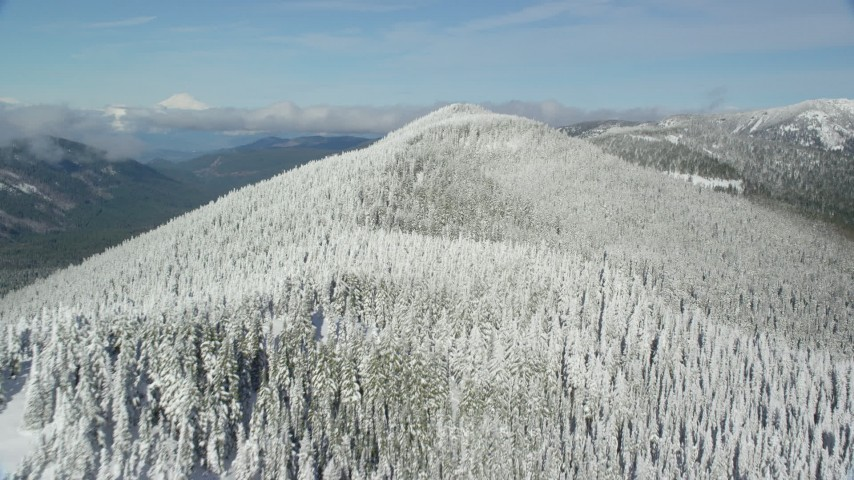 6K stock footage aerial video flying over snow forest on a mountain ridge with snow, Cascade Range, Oregon Aerial Stock Footage | AX154_104