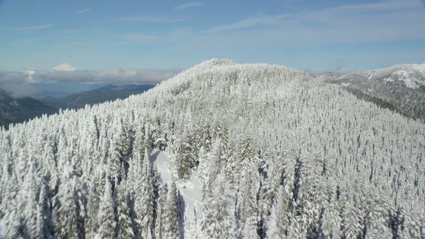 6K stock footage aerial video flying over a snow forest on top of a mountain ridge, Cascade Range, Oregon Aerial Stock Footage | AX154_105