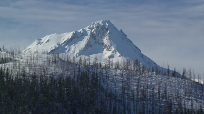 6K stock footage aerial video of snowy peak summit behind ridge with dead evergreens, Mount Hood, Cascade Range, Oregon Aerial Stock Footage | AX154_124
