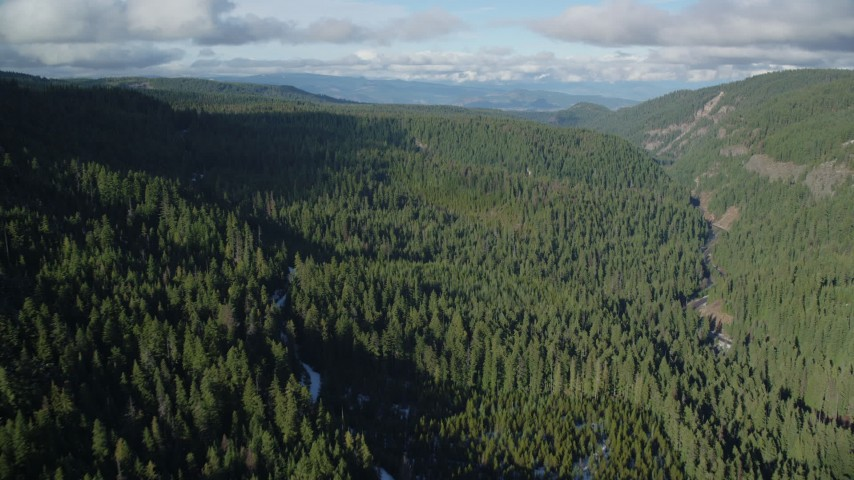 6K stock footage aerial video flying over canyon and evergreen forest near Highway 35, Cascade Range, Hood River Valley, Oregon Aerial Stock Footage   AX154_127