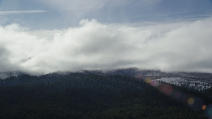 6K stock footage aerial video of Summit of Mount Hood behind low clouds over evergreen forest, Mount Hood, Cascade Range, Oregon Aerial Stock Footage | AX154_132