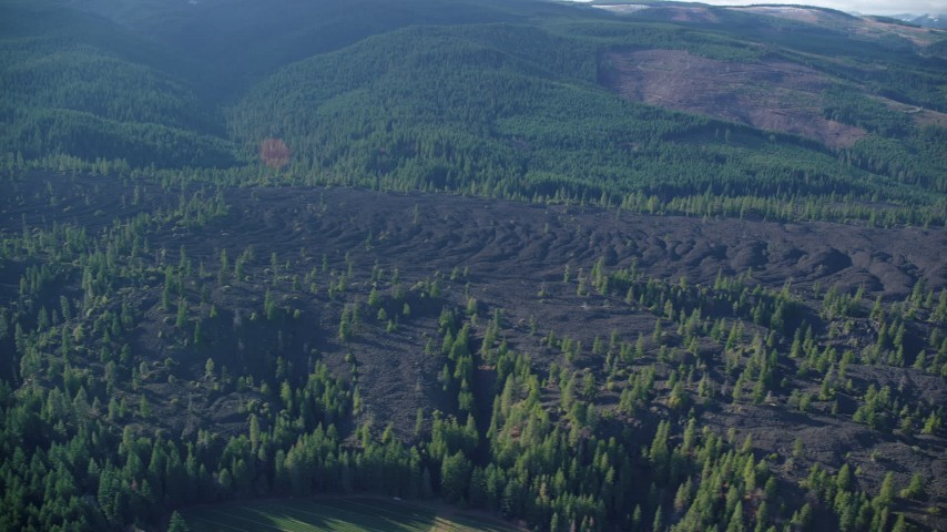 6K stock footage aerial video flying lava flow and evergreen forest in Parkdale, Oregon Aerial Stock Footage | AX154_139