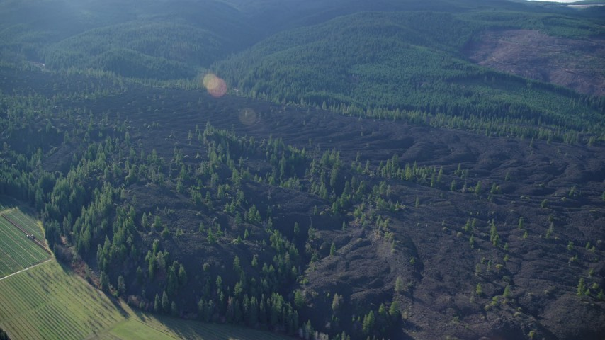 6K stock footage aerial video flying by lava flow and evergreen forest by Parkdale, Oregon Aerial Stock Footage | AX154_140
