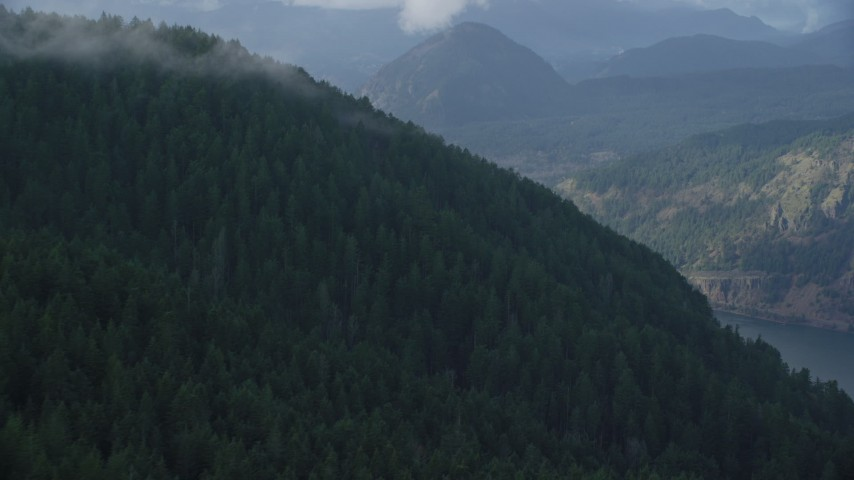 6K stock footage aerial video flying by evergreen forest on mountain to reveal the Columbia River Gorge, Hood River County, Oregon Aerial Stock Footage | AX154_154