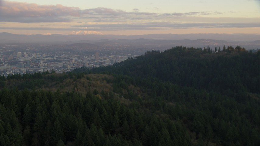 6K stock footage aerial video of Mount Hood and Downtown Portland at sunset, seen from evergreen forest and hills in Northwest Portland, Oregon Aerial Stock Footage | AX155_140