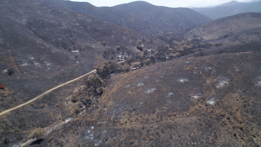 5K stock footage aerial video follow and pan across a mountain road through fire-ravaged Santa Monica Mountains, California Aerial Stock Footage | AX42_016