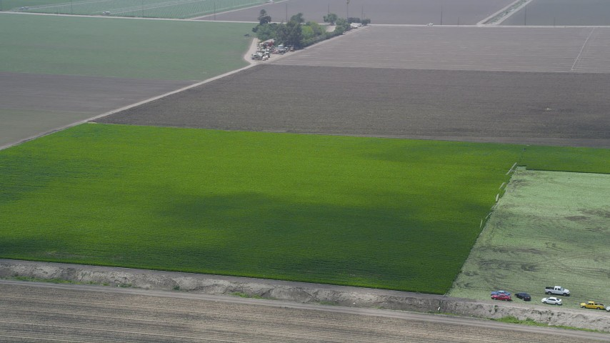 5K stock footage aerial video track a field of green crops, Camarillo, California Aerial Stock Footage | AX42_037