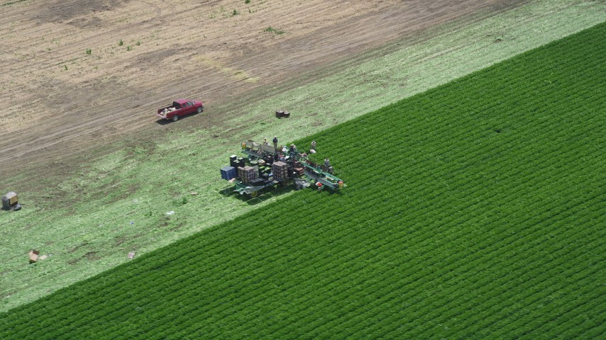 5K stock footage aerial video of orbiting farm workers picking crops from a field, Camarillo, California Aerial Stock Footage | AX42_040
