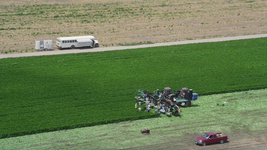 5K stock footage aerial video of orbiting farm workers working a crop field, Camarillo, California Aerial Stock Footage | AX42_041