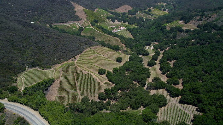 5K stock footage aerial video of vineyards in the hills of Malibu, California Aerial Stock Footage | AX42_097