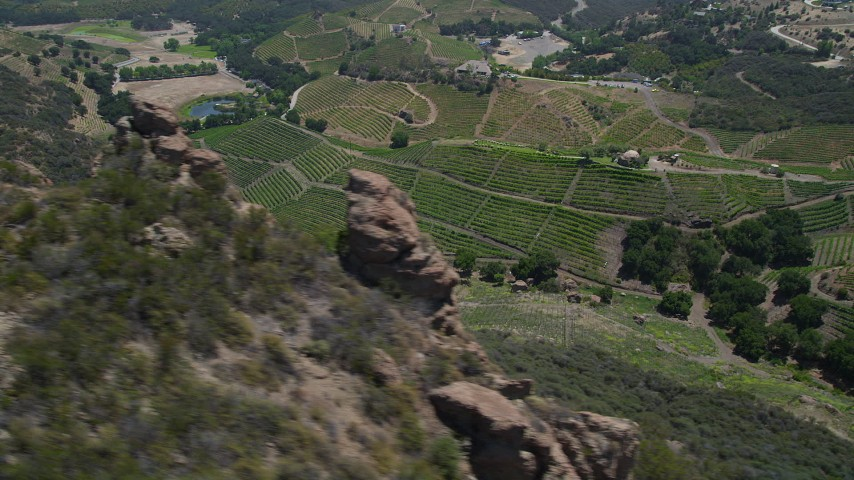 5K stock footage aerial video of flying by hilly vineyards in Malibu, California Aerial Stock Footage | AX42_105