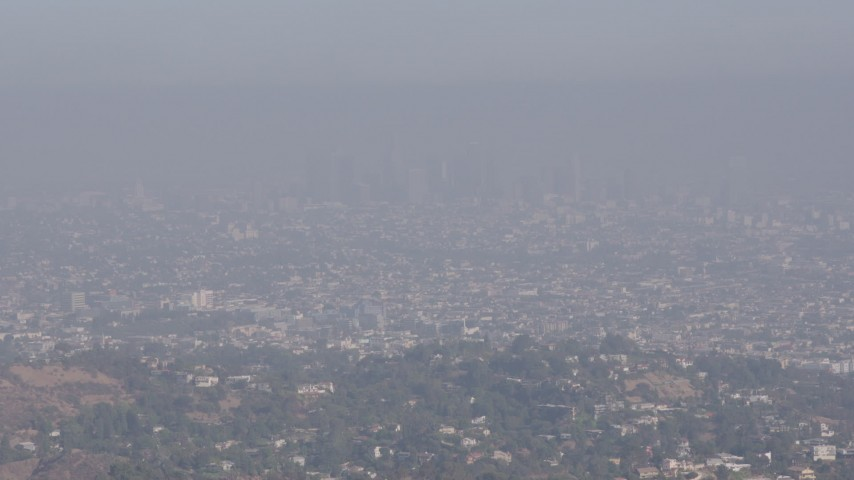 4K stock footage aerial video approaching and flying over a tree atop a hill to reveal Downtown Los Angeles, California  Aerial Stock Footage | AX43_001