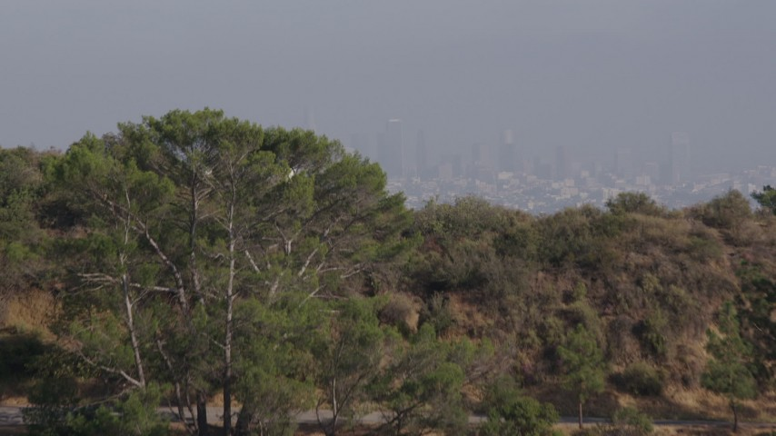4K stock footage aerial video ascending over a hill to reveal Griffith Observatory and Downtown Los Angeles cloaked in fog, Los Angeles Aerial Stock Footage | AX43_017
