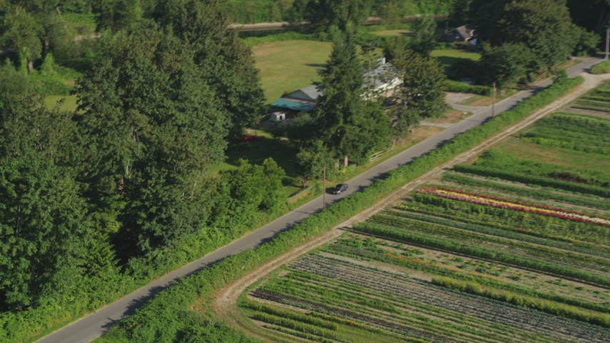 5K stock footage aerial video of tracking a sedan traveling on a country road by farmland in Carnation, Washington Aerial Stock Footage | AX48_038