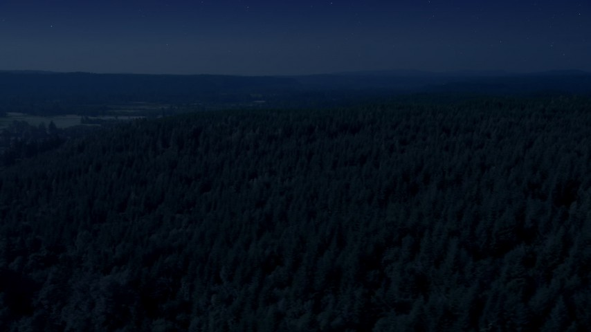 Day for night color corrected aerial footage of a lush evergreen forest in King County, Washington Aerial Stock Footage | AX48_042_DFN