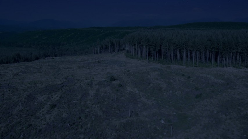 Day for night color corrected aerial footage of a clear cut area, pan to approach evergreen forest in King County, Washington Aerial Stock Footage | AX48_044_DFN