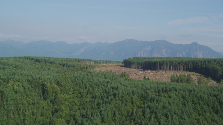 5K stock footage aerial video of flying by a clear cut area in forest in King County, Washington, near the Cascade Range Aerial Stock Footage | AX48_045