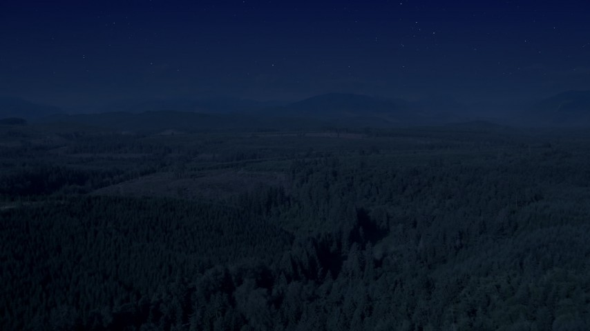 Day for night color corrected aerial footage of a vast evergreen forest, and approach a clear cut area in King County, Washington Aerial Stock Footage | AX48_046_DFN