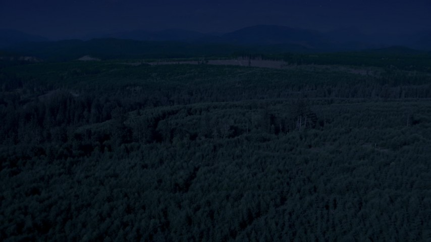 4K day for night color corrected aerial footage of flying over evergreen trees to approach a wide clear cut area, King County, Washington Aerial Stock Footage | AX48_047_DFN