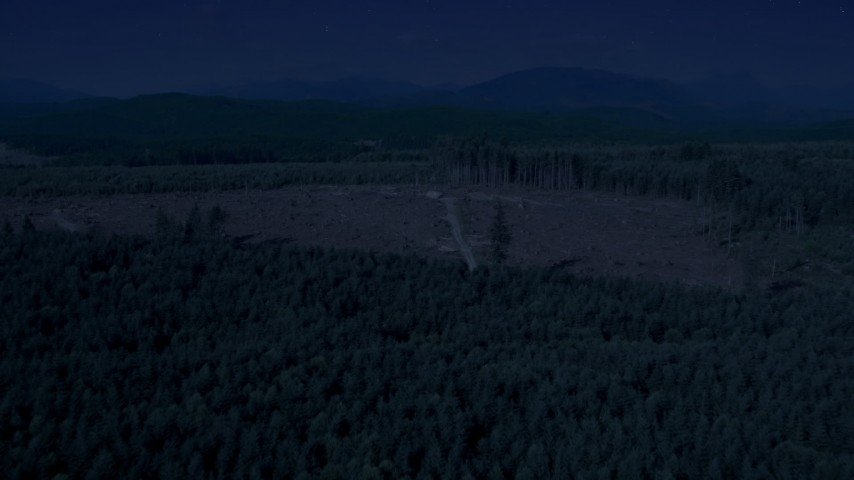 Day for night color corrected aerial footage of a logging clear cut area in an evergreen forest, King County, Washington Aerial Stock Footage | AX48_048_DFN