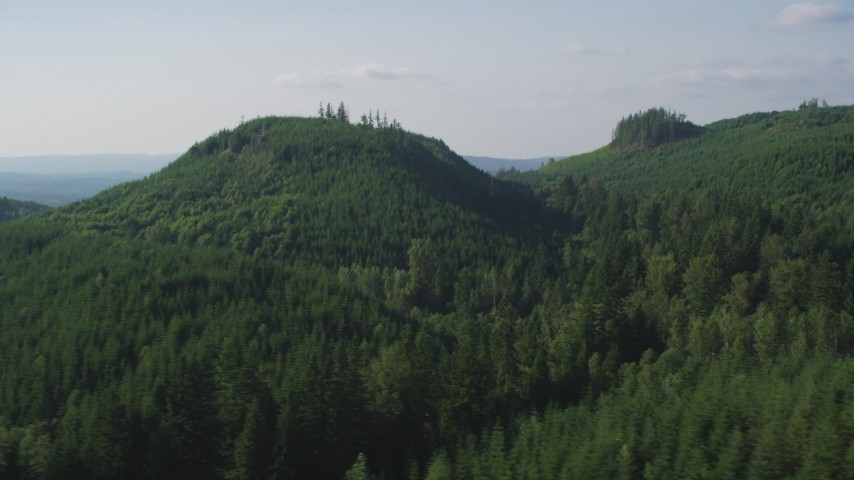 5K stock footage aerial video of green hills and evergreen forest in King County, Washington Aerial Stock Footage | AX48_051
