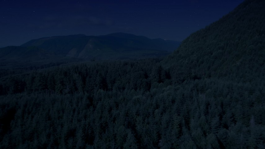 Day for night color corrected aerial footage of evergreen forest to reveal a road in King County, Washington Aerial Stock Footage | AX48_056_DFN