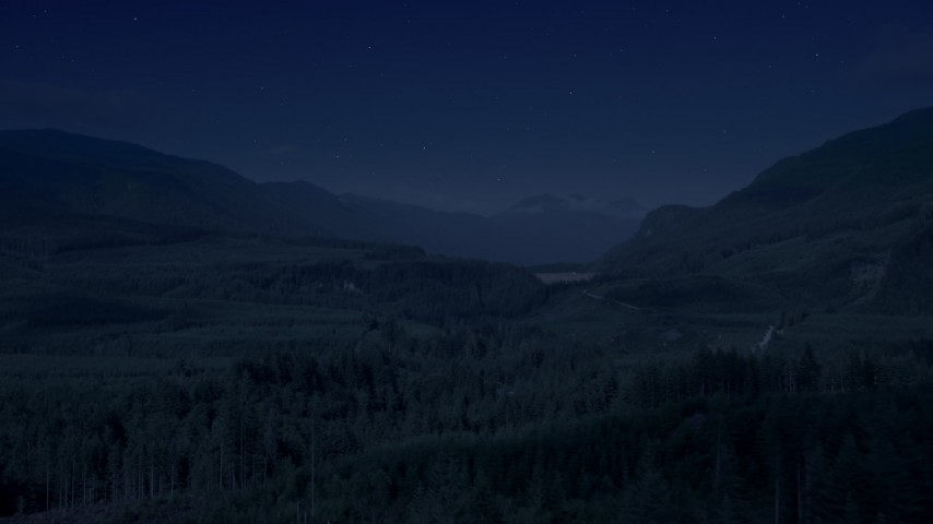4K day for night color corrected aerial footage of a forest and a narrow road through evergreen trees in King County, Washington Aerial Stock Footage | AX48_057_DFN