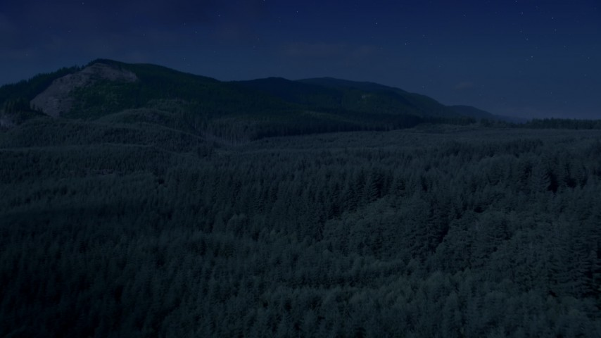 Day for night color corrected aerial footage of evergreen forest, reveal the South Fork Tolt Reservoir, Cascade Range, Washington Aerial Stock Footage AX48_058_DFN