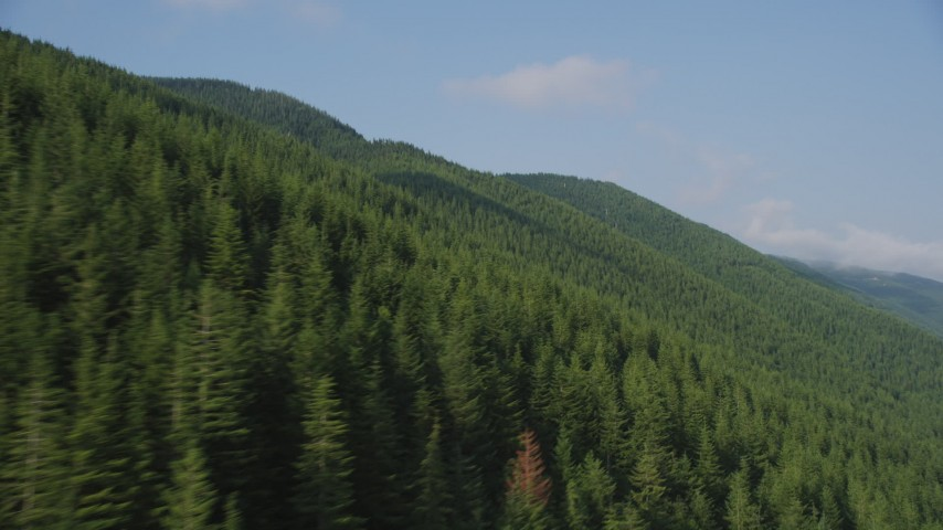 5K stock footage aerial video of flying by mountain slopes covered with evergreen trees in the Cascade Range, Washington Aerial Stock Footage | AX48_060