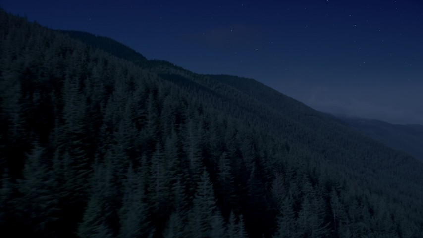 4K day for night color corrected aerial footage of mountain slopes covered with evergreen trees in the Cascade Range, Washington Aerial Stock Footage | AX48_060_DFN