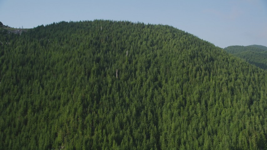 5K stock footage aerial video flyby evergreen trees covering a mountain ridge in the Cascade Range, Washington Aerial Stock Footage | AX48_062
