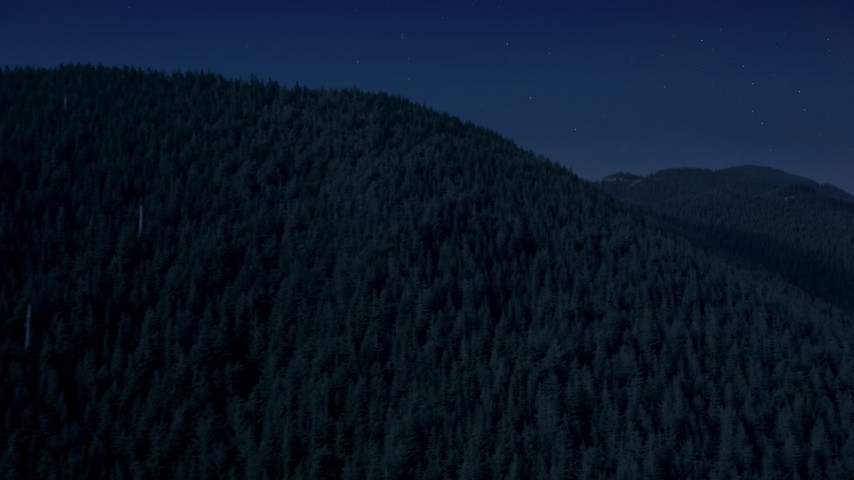 4K day for night color corrected aerial footage of evergreen trees covering a mountain ridge in the Cascade Range, Washington Aerial Stock Footage | AX48_062_DFN