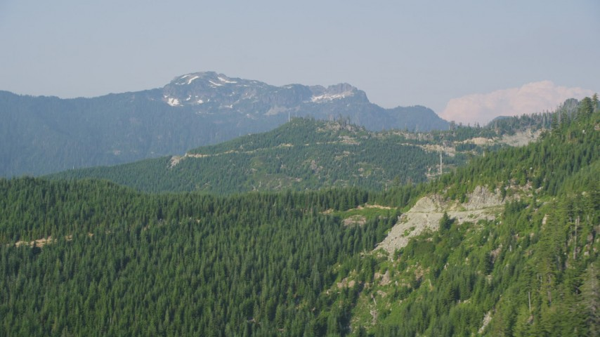 5K aerial video flyby evergreen trees on the slope of a mountain ridge in the Cascade Range, Washington Aerial Stock Footage | AX48_064