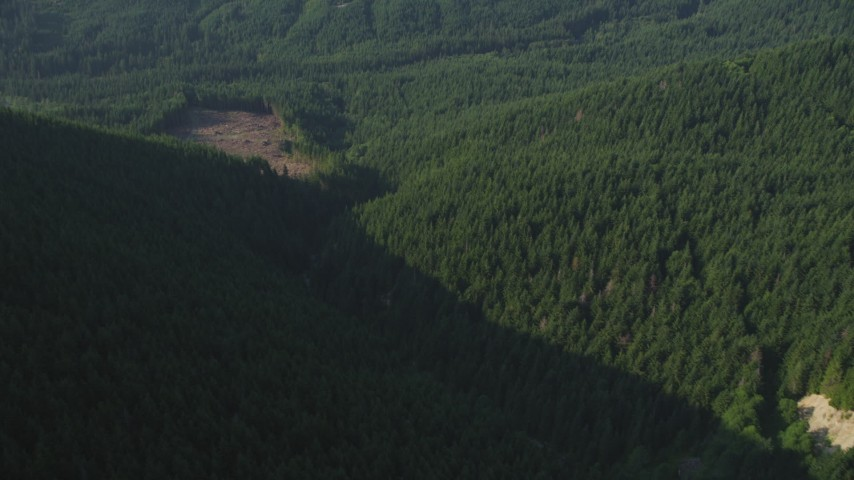 5K stock footage aerial video tilt from a bird's eye of a river through forest in the Cascade Range, Washington, reveal small logging area Aerial Stock Footage | AX48_065