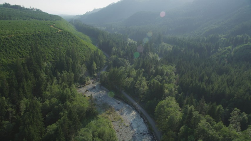 5K stock footage aerial video of following a river through evergreen forest to reveal a road, King County, Washington Aerial Stock Footage | AX48_069