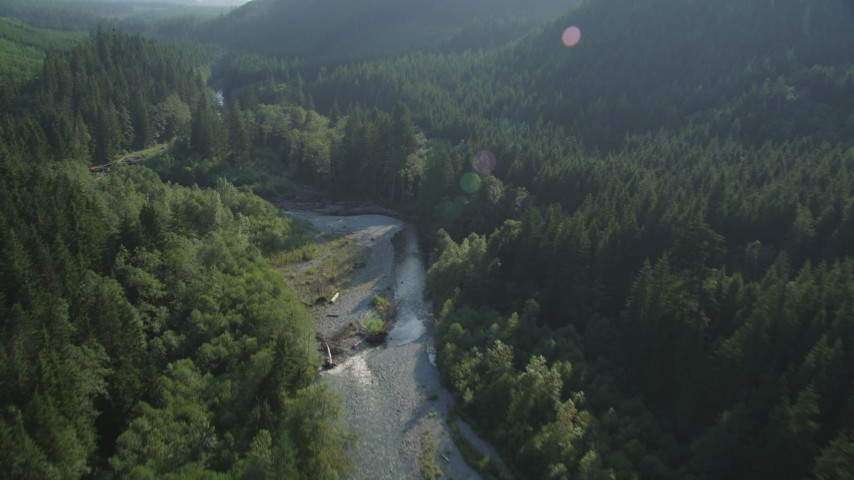 5K stock footage aerial video of flying over a river running through an evergreen forest in King County, Washington Aerial Stock Footage | AX48_070