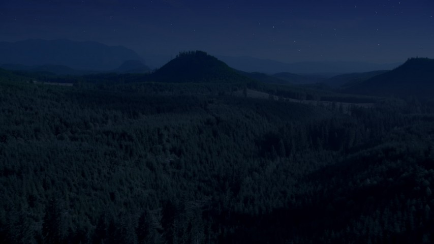 Day for night color corrected aerial footage of evergreen forest, reveal a green hill and logging areas in King County, Washington Aerial Stock Footage | AX48_077_DFN