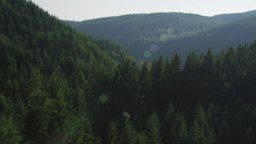 5K stock footage aerial video of flying over evergreen forest and mountain slopes in the Cascade Range, Washington Aerial Stock Footage | AX48_081