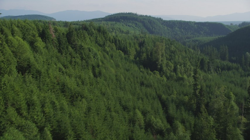 5K stock footage aerial video of a vast evergreen forest on a ridge in the Cascade Range, Washington Aerial Stock Footage | AX48_082